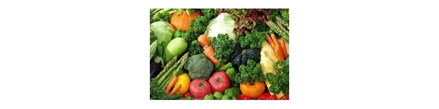 سیاست های غذا وتغذیه